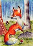Fuchsi by karpfinchen