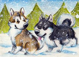 Snow Dogs by karpfinchen