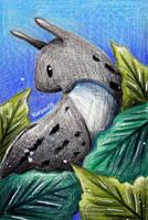 The Leopard Slug by karpfinchen