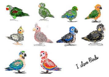 Baby bird by Namyi
