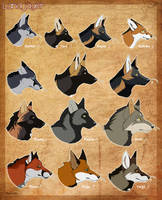 Landjaeger Face Comparison - Outdated colors by BlueHunter