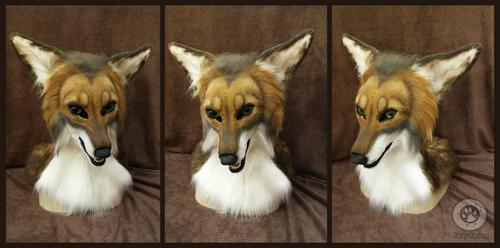 Stevo coyote head by Kay-Ra