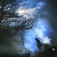 Rooftops poetry by Julie-de-Waroquier