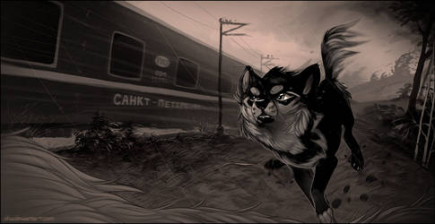 Follow the Train by Oha