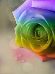 Rainbow Rose by MeganLeeRetouching