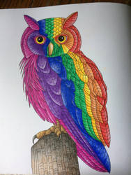 Rainbow Owl by desertwind75