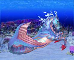 Seahorse by Dakorillon