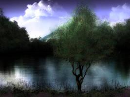 Evening Tree by Dakorillon