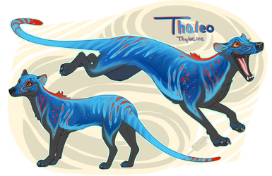Thaleo the Thylacine by ThePopsicleThief