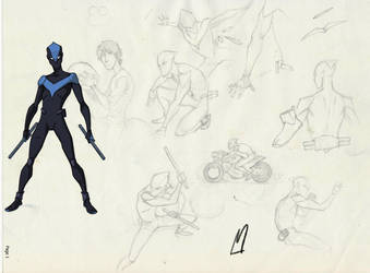 animated nightwing by gloooscap