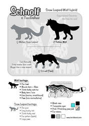 Schnolf size chart by TaniDaReal