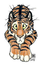 Stuck tiger by TaniDaReal