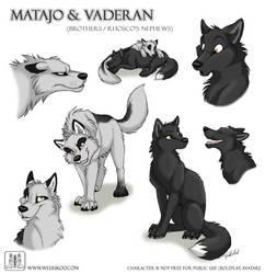 Sketches Matajo and Vaderan by TaniDaReal