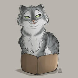 If I sits - it fits by TaniDaReal