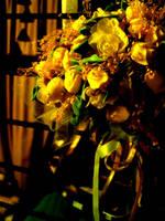 Bride bouquet by livingdoll