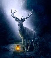 Deer by dudeckaya