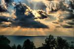 Heavy sky. by cellists