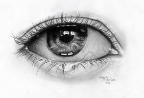 Ojo hecho a Grafito | Eye made with Graphite by Faleru