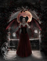 Gothic Enchantment by Gina-Marie