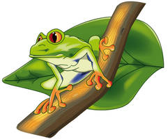 Grenouille Arboricole by Nialee