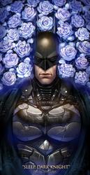Sleep, Dark Knight by AkubakaArts