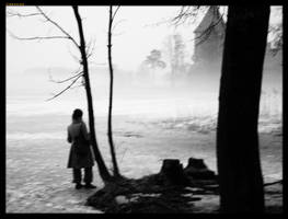 Woman watching castle and fog by sirlatrom