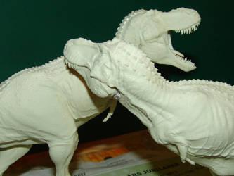 Sizing up by Gorgosaurus
