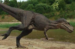 Thirsty Gorgosaurus by Gorgosaurus