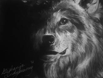 Fading Wolf by SkiAr7sy