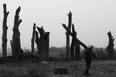 Wandering alone in a dead world by Stilleschrei
