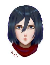 Mikasa by KatohHiki