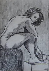 Life Drawing 3 by crowleyronan