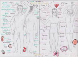 Anatomical diagrams labeled in Italian by x-X-x-Lizard-x-X-x