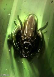 Alien Xenomorph (Warrior) by DiegoKlein