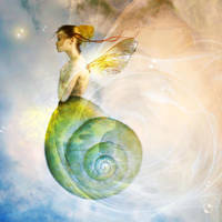 when snails fly by JenaDellaGrottaglia