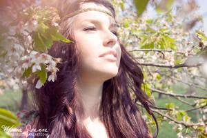 Spring-Tree by HasiMD
