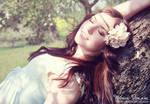 Spring by HasiMD