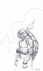 The Ninja Turtle by dogmeatsausage