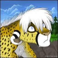 Dimeyi profile by KaiserTiger