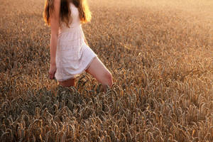 Walk in fields of Gold by strawberryswing93