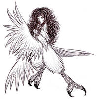 Harpy by Moros