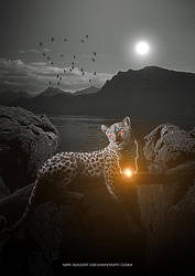 Tiger of Light by Mr-Sadat