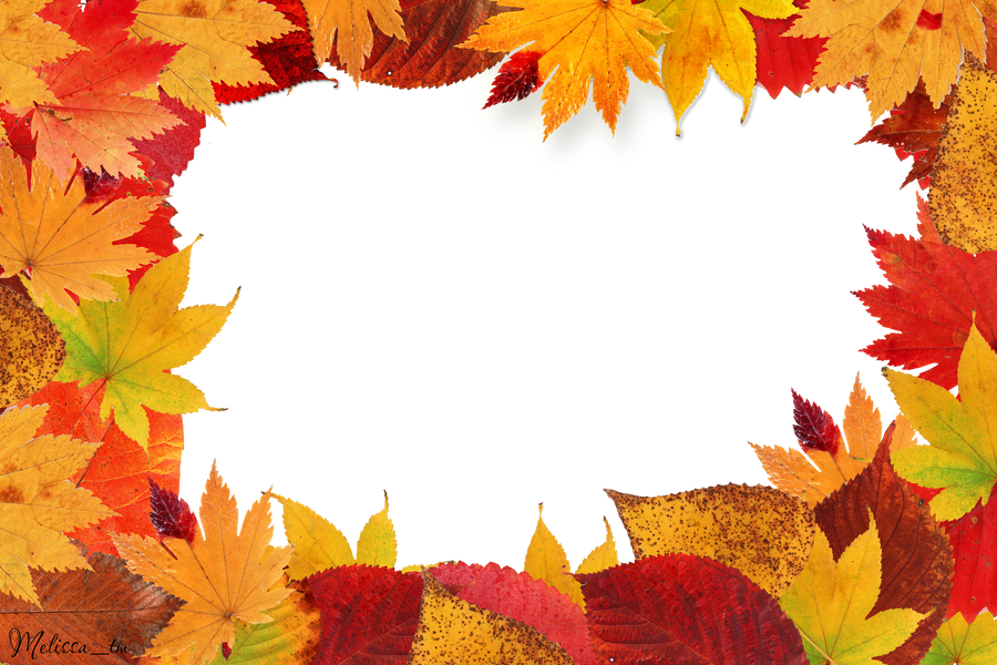 frame PNG autumn leaves by Melissa-tm