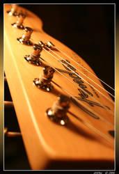 Heikki's Fender - 6 by airone27