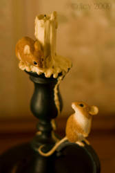 Harvest Mice by IcyCobweb