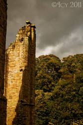 Priory Wall by IcyCobweb