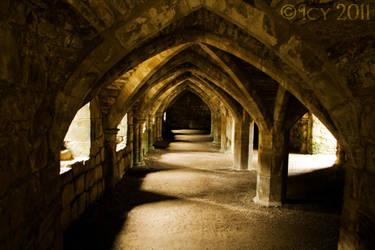 Priory Cellar by IcyCobweb