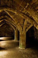 Cellar Arches by IcyCobweb