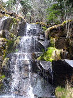 Waterfall at Mt Rainier by sugarcoat