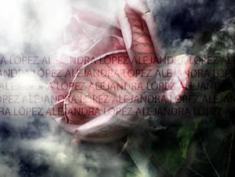 rose fairy by ColdDarkSilent